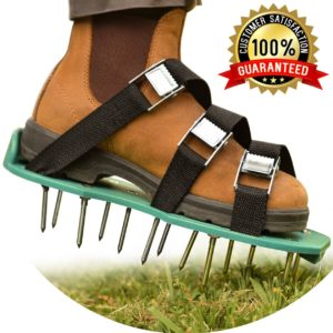 lawn aerator shoes -Winter Lawn